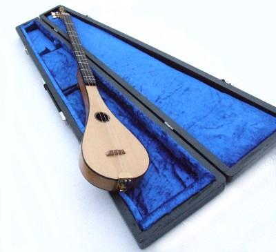 cased gdg instrument