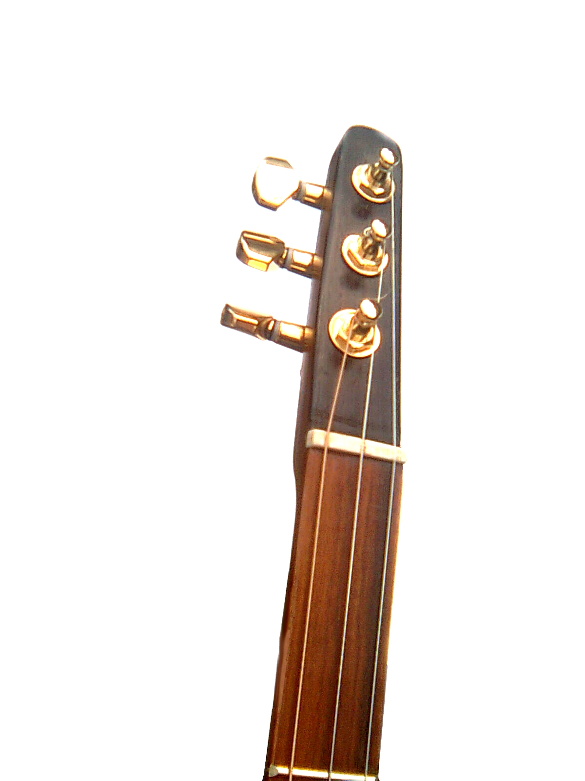 old version with bone nut and no zero fret