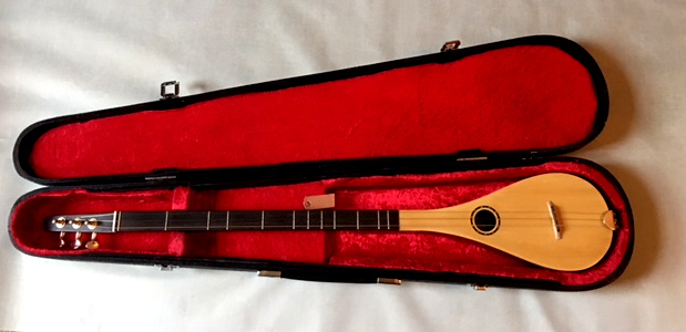 stick dulcimer in its case,  2017/2018 model